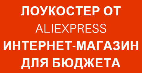 Lowcoster Aliexpress logo