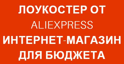 Lowcoster Aliexpress logo