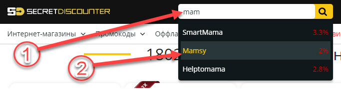 Поиск интернет-магазина Mamsy в Secret Discounter через поисковую строку