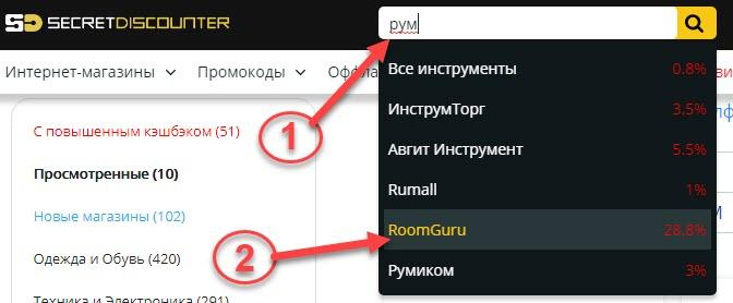 Поиск страницы RoomGuru.ru в Secret Discounter через поисковую строку