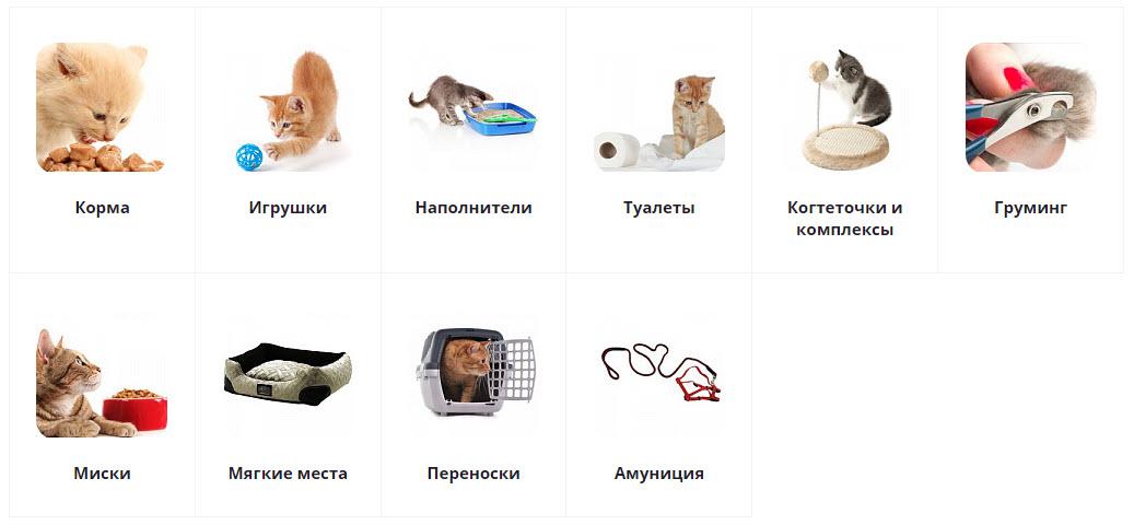 """Товары для кошек в магазине """"Бетховен"""""""