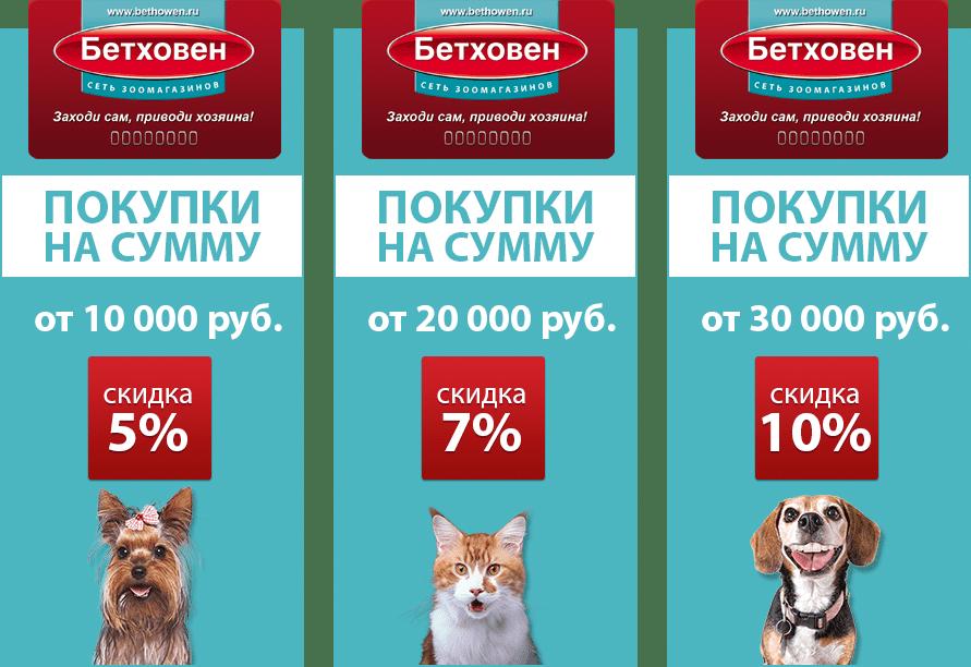 """Дисконтная программа от магазина """"Бетховен"""""""